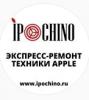 """Компания """"Ipochino"""""""